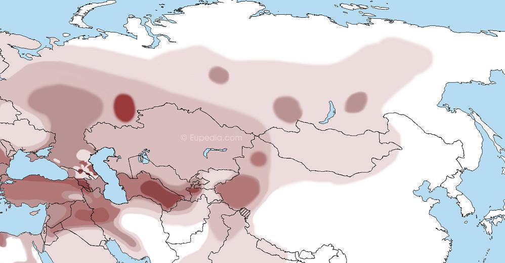Scytho-Turkic Z93 branch Z2125 vs  Indo-Aryan migration